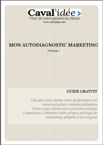 Guide pratique, autodiagnostic marketing