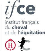 ifce_nouveau_logo