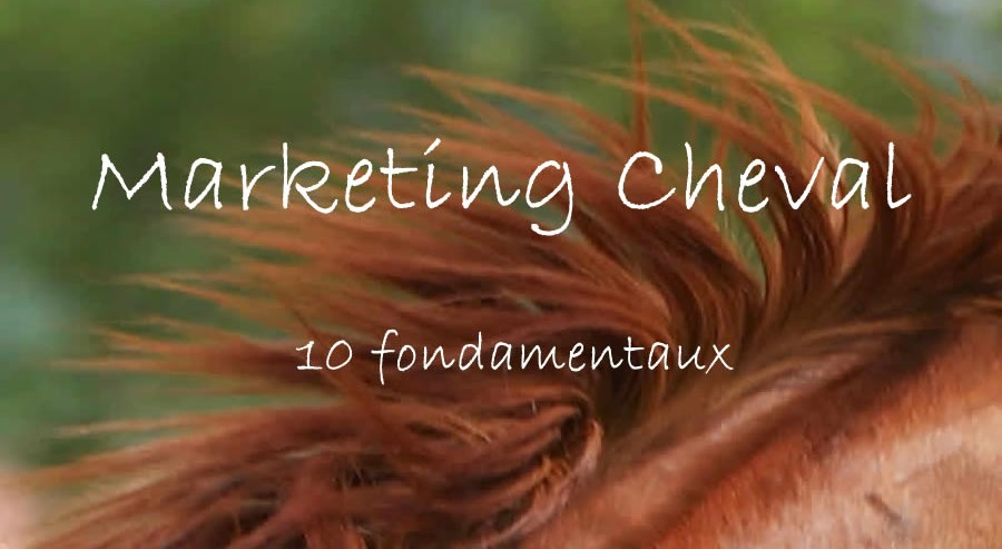 Les 10 fondamentaux du Marketing Cheval